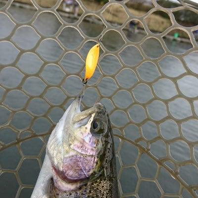【休日明けは難しい?よく釣れる?】朝霞ガーデンの記事に添付されている画像