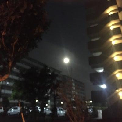 ゆずと月とリダの記事に添付されている画像