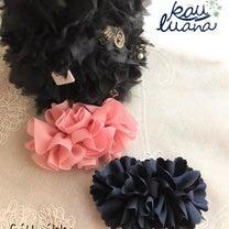 ✨New✨frill ribbon byr.c.lupinas.plusの記事に添付されている画像