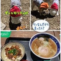 楽しいPキャン☆2019 宮城 松島編の記事に添付されている画像