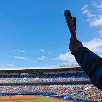 2年ぶり・2度目の野球観戦の記事に添付されている画像