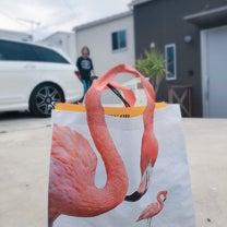 伊豆の鳥カフェの記事に添付されている画像