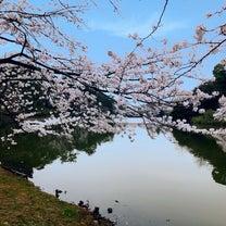 お花見スポットとお客様ネイル❁❁◆昭島・中神ネイルサロンの記事に添付されている画像