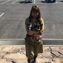 小豆島【オリーブ公園】★の記事に添付されている画像