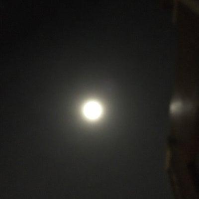 月光浴の記事に添付されている画像