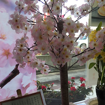 春のまつり♪の記事に添付されている画像