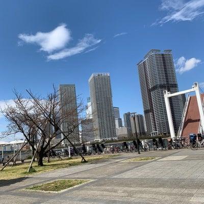 東京出張へ。『もう、やっぱりこれなんだよ~!』の記事に添付されている画像