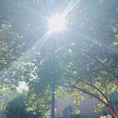 【今日のエネルギー】 K148「外より内に目を向ける」~イチロー選手、ありがとうの記事に添付されている画像