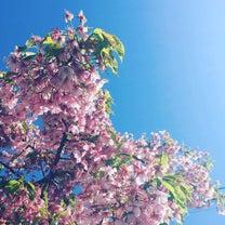 春分と満月・出会いと触れ合いの記事に添付されている画像