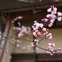 谷戸山公園の記事に添付されている画像