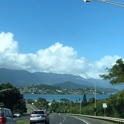 2019年1月ハワイ旅 ビーチコーミングの記事に添付されている画像