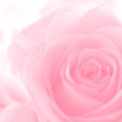 「外より内に目を向ける・寛容であれ」3月22日のマヤ暦(KIN148)の記事に添付されている画像