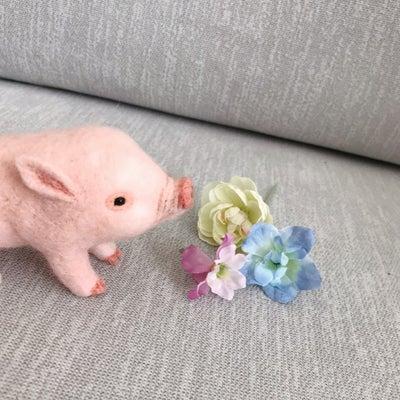 新作豚さんと猫散歩♪の記事に添付されている画像