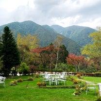 *一度きりの結婚式場見学の記事に添付されている画像