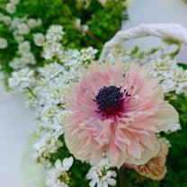 桜のピンクスイーツ♡東京ミッドタウン六本木の空で蕾の記事に添付されている画像