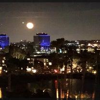 LAから お届け⑵ マリナデルレイの月と太陽の記事に添付されている画像