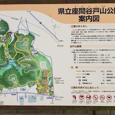 県立座間谷戸山公園の記事に添付されている画像