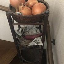 野菜のストックの記事に添付されている画像