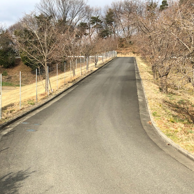 3/22 坂道ダッシュ10本+3kmトレラン+32°法面RUN3往復の記事に添付されている画像