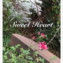 パッチワーク教室・レジン教室SweetHeart 3月の記事に添付されている画像