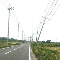 昨年の台風の傷跡の記事に添付されている画像
