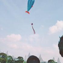 お正月からジワジワキテる凧。グダグダな今日の私…!の記事に添付されている画像