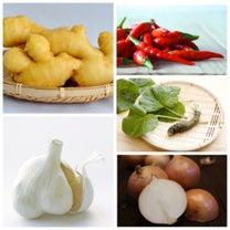 味覚の性質 〈辛味〉の記事に添付されている画像