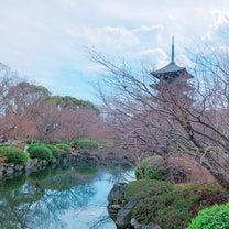 光を観る旅 in 東寺 の お楽しみ編♪の記事に添付されている画像