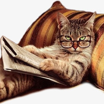 RPAでかわいい猫の画像。の記事に添付されている画像