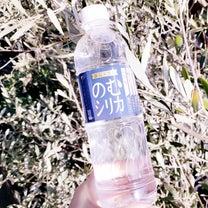 霧島の天然水でシリカが摂れる♪のむシリカの記事に添付されている画像