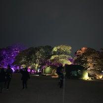 チームラボ 広島城 光の祭の記事に添付されている画像