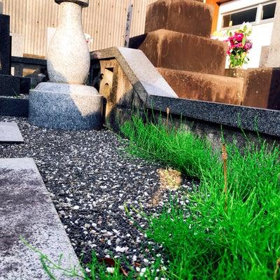 春分の日は墓参りに…の記事に添付されている画像