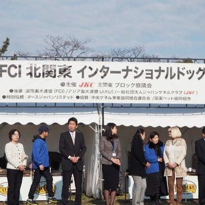 ドッグショー ☆FCI北関東インター☆の記事に添付されている画像