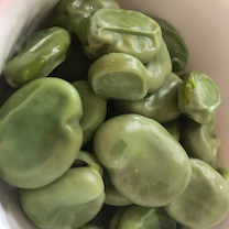 空豆が好きの記事に添付されている画像