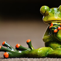 ‼️驚愕‼️️今の自分は茹でガエルのおはなし‼️の記事に添付されている画像