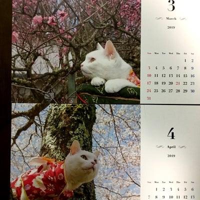 3月23日土曜日 龍神カードから今日の1枚の記事に添付されている画像