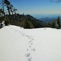 【死と直面】雪の大回廊・大佐飛山2019④(下山編)…の記事に添付されている画像