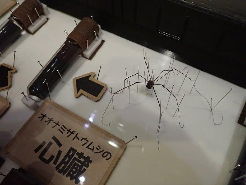 下関 ホタル の 里 ミュージアム