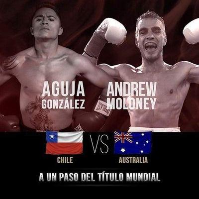 WBAスーパーフライ級挑戦者決定戦 「結果」 ゴンサレスvsマロニーの記事に添付されている画像