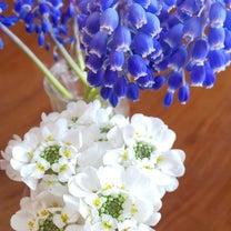 春☆の記事に添付されている画像