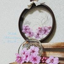 明日は、荒井 なないろマルシェ!河津桜のドライフラワー予約受付中の記事に添付されている画像