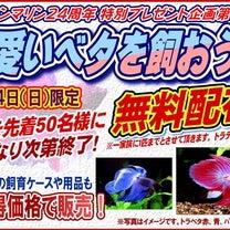 3/24(日)ベタ無料配布イベント!!!の記事に添付されている画像