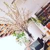 ELLE cafe@青山で時間管理術お茶会♪の画像