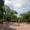 香港 九龍公園の画像