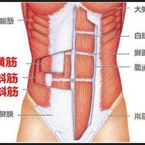 【内腹斜筋】外腹斜筋の違いと鍛え方動画のシェア(*^^)vの記事に添付されている画像