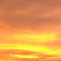 金色の龍雲の記事に添付されている画像