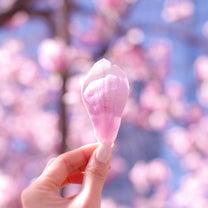 【4月5月のご予約可能日】〜春は肝臓 夏は心臓の季節〜の記事に添付されている画像