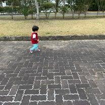 愛野公園へ散歩☆( ^ω^ )/の記事に添付されている画像