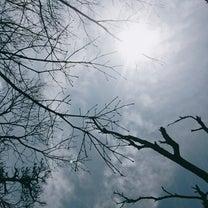 YURUKU®︎お散歩会〜保久良神社と金鳥山〜の記事に添付されている画像
