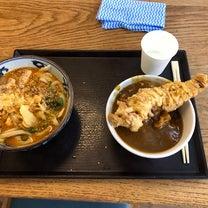 成田空港第3 ピリ辛豚味噌うどん+カレー丼の記事に添付されている画像